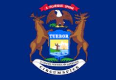 Michigan LLC Filing